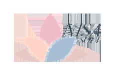 nisa-soul-logo